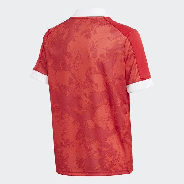 Сборная России футболка для игр евро 2020 (2021)